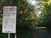 Arayama201009_098