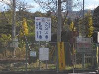 Chichibu_003