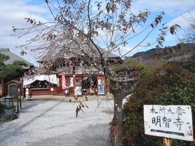 Chichibu_102