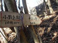 Onoko_017