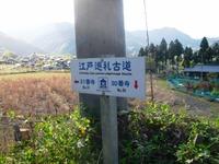 Chichibu2011_338
