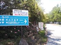 Tumagoi2011_066