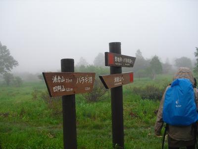 Azumaya_kazawa2011_159_2
