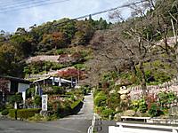 Chichibu_201111_032