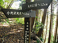 Chichibu_201111_065