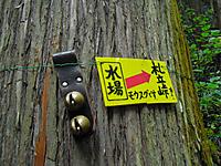 Chichibu201112_068