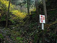 Chichibu201112_099